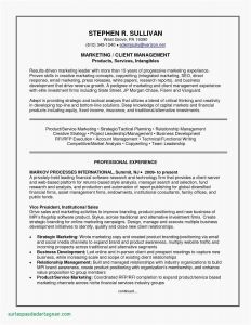 Marketing Manager Resume Template - Marketing Manager Resume New Awesome Marketing Manager Resume