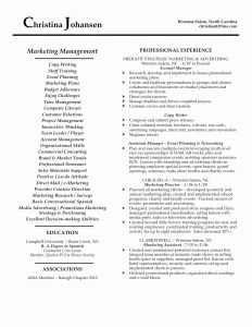 Marketing Resume - Sales and Marketing Resume Luxury American Resume Sample New Student
