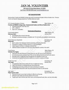 Marshall Resume Template - 23 Resume Strong Examples