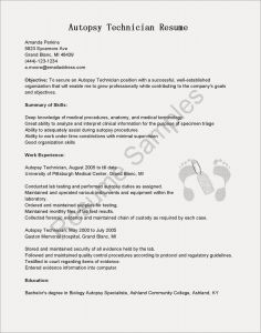 Mechanic Cv Example Resume - Mechanic Cv Example Resume New Aviation Mechanic Resume Templates