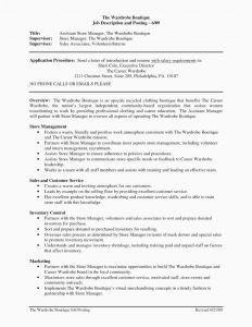 Mergers and Acquisitions Resume Template - Mergers and Inquisitions Resume Template Sample Mergers and