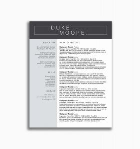 Mergers and Inquisitions Resume Template - 21 Professional Resume Template 2018