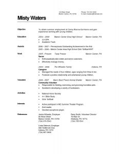 Middle School Resume Template - 53 Design High School Resume Examples