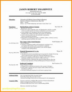 Mini Resume Template - Favorite Find Resume Templates Microsoft Word Vcuregistry