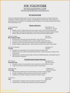 Music Business Resume Template - Sample Resume for 10 Years Experience Fresh Best Resume Layout