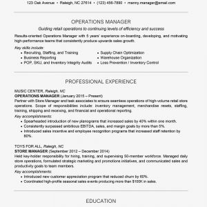 New Car Sales Executive Job Description Resume - Management Resume Examples and Writing Tips