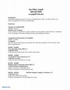 Nurse Manager Resume - Cna Resume Rn Bsn Resume Awesome Nurse Resume 0d Wallpapers 42
