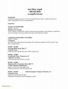 Nurse Manager Resume Template - Download Lovely Resume Examples Cna