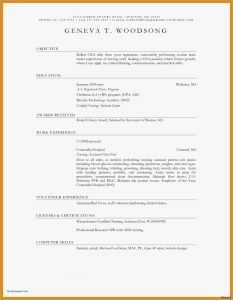 Nursing Resume Template Free Download - 24 Best Resume forms Picture