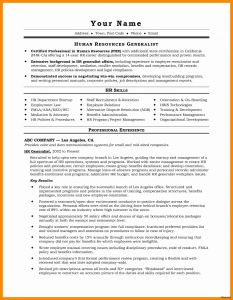 Performance Resume Template - Sample Professional Resume Lovely Resume for It Job Unique Best