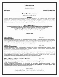 Personal assistant Resume - Executive assistant Resumes Unique Resume Template Executive
