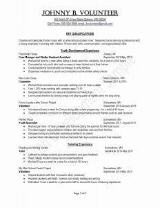 Pet Resume Template Word - Resume Templates Word 200 Inspirationa Resume Templates Word 2007