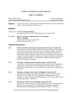 Pet Resume Template Word - 46 Best Internship Resume Examples