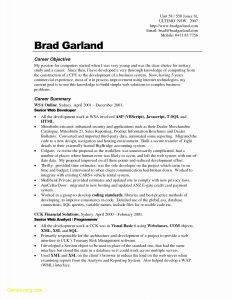 Photographer Resume Template Download - Modern Resume Cover Letter Template Examples