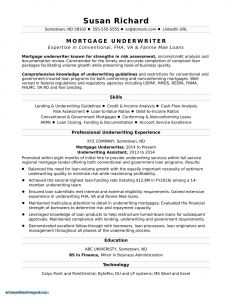 Princeton Resume Template - Beautiful Detailed Resume format for Freshers Resume Ideas