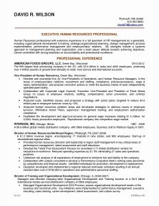 Private Equity Resume Template - Experienced Private Equity Resume New Private Equity Resume Template