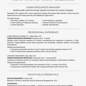 Problem Action Result Resume - Problem Action Result Resume Beautiful Positive Words for A Resume