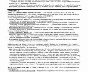 Product Manager Resume Template - Product Manager Resume Lovely Senior Executive Resume Examples
