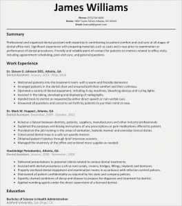Professional Resume - Resume Professional Summary Examples New Sample Resumes