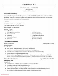 Professional Resume - Example Professional Resume Best Professional Resume New Fresh