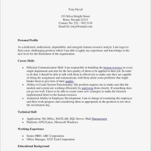Professional Resume - Simple Resume Template Free New Awesome Free Professional Resume