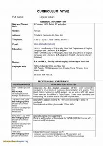 Promotional Model Resume Template - Promotional Model Resume Template Fwtrack Fwtrack