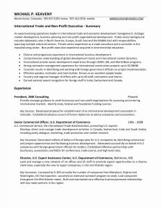 Proposal Resume Template - Business Resume Examples Fresh Resume or Cv Unique American Resume