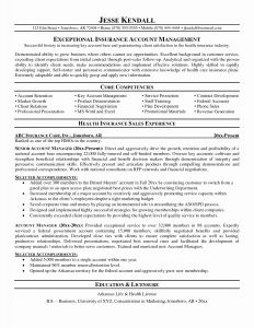 Public Health Resume Template - 16 New Plan Home Health Care