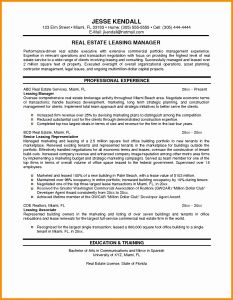 Real Estate Agent Resume Template - Resume for Sales Executive In Real Estate Resume Resume Examples