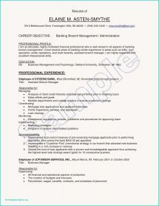 Resume Template for Bank Jobs - Banker Resume Elegant Grapher Resume Sample Beautiful Resume Quotes