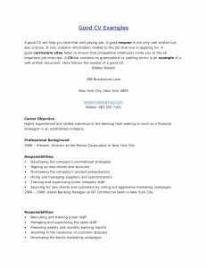 Resume Template for Bank Jobs - Skills Resume Examples Luxury What to Put Resume for Skills Resume