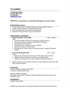 Resume Template for Bank Teller - Apa Resume Template New Examples A Resume Fresh Resume Examples 0d