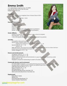 Resume Template for Freshman College Student - College Freshman Resume Gallery College Freshman Resume New Entry