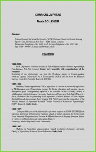 Resume Template for Libreoffice - 35 Awesome Free Cv Templates Microsoft Word Template Powerpoint