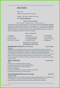 Resume Template for Libreoffice - Federal Job Resume Template 13 Advanced Awesome Resume Template