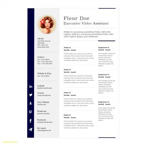 Resume Template for Mac Pages - Microsoft Fice Resume Templates for Mac Best Resume Template for