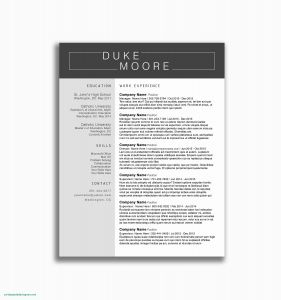 Resume Template for Open Office - Open Fice Resume Template