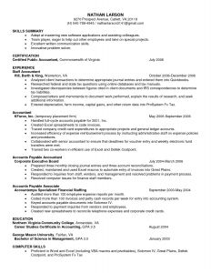 Resume Template for Openoffice - Accessiresume Resume Templates Openoffice