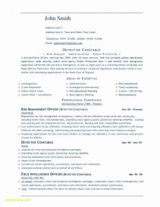 Resume Template for Police Officer - Resume Microsoft Word New Best Federal Government Resume Template