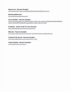 Resume Template for Police Officer - Police Ficer Resume Samples – 30 Police Ficer Resume Template
