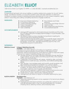 Resume Template for Receptionist - Front Desk Receptionist Resume Lovely Reception Resume Luxury