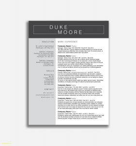 Resume Template for Senior Management - 46 Design Executive Resume Template