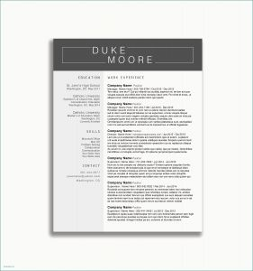 Resume Template for social Worker - Resume format for social Worker Professional Resume Templates Best