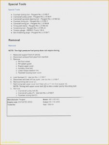 Resume Template with Volunteer Experience - Volunteer Experience Resume Examples Fresh Volunteer Experience