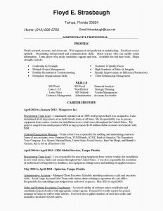 Rfp Resume Template - Sales Sheet Template Heritageharvestfarm