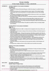Rutgers Resume Template - 21 Best Best Product Manager Resumes Simple