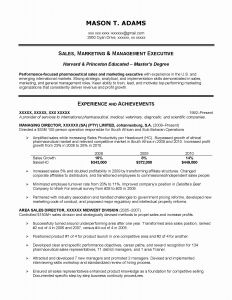 Sales Executive Resume Template - Sales Manager Resumes Samples Sales Manager Resume Examples Fresh