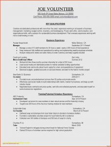 Sales Representative Resume Template - How to Right A Resume Best Free Examples Fresh Business Pany