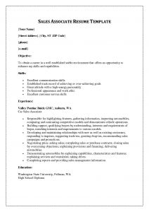 Salesperson Description for Resume - Resume Examples for Sales associate Best Awesome How Can I Do A