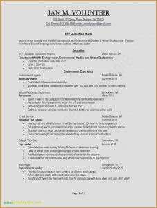 Security Resume Template - Example Resume Example Resume Skills Awesome Examples Resumes